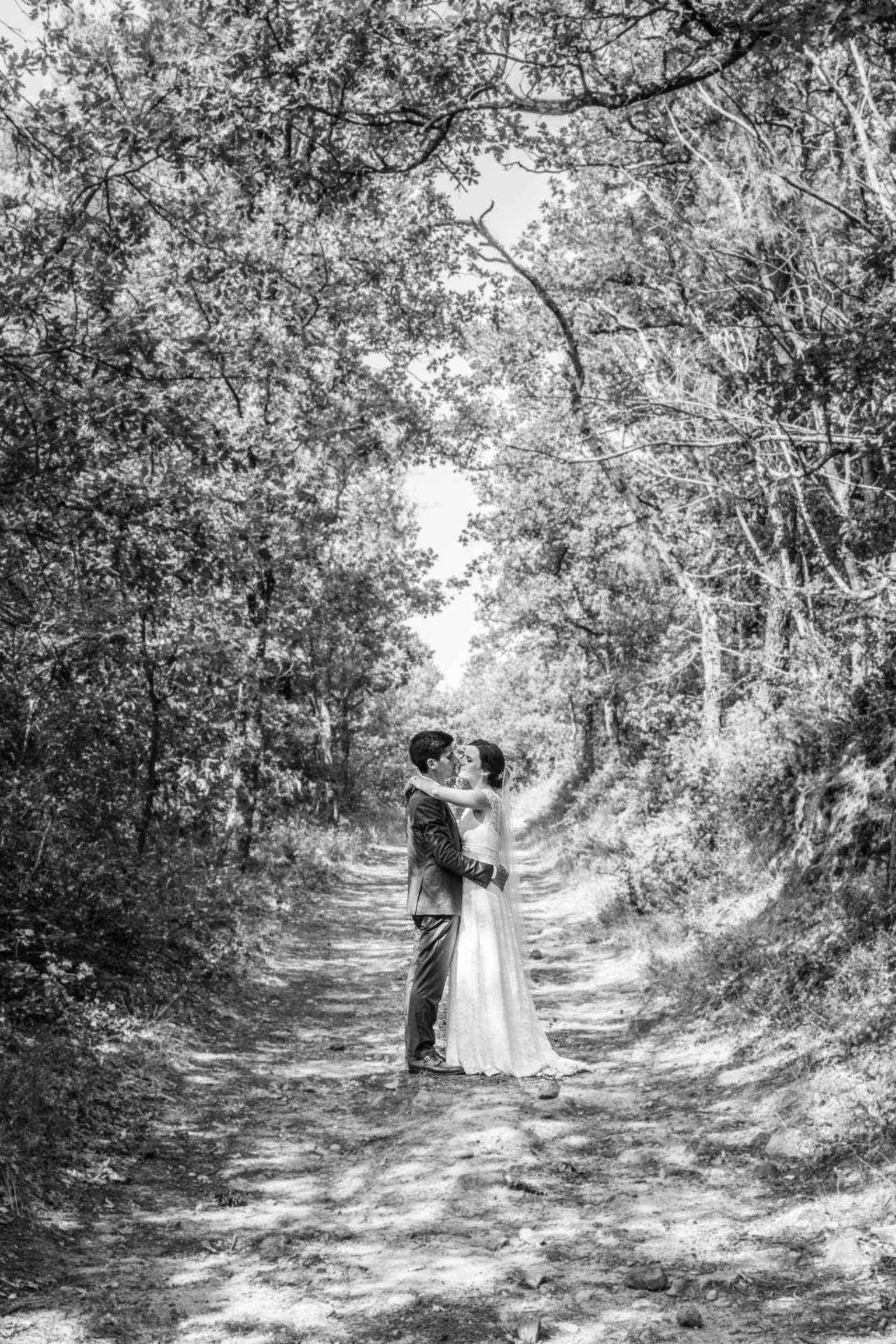 Les mariés s'embrassent dans une allée de forêt.